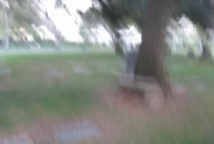 Oak Park Cemetery Revisit image