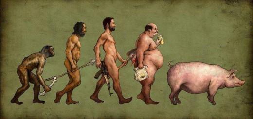 De-evolution image